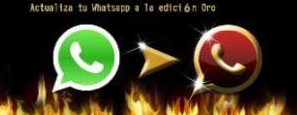 whatsapp de oro