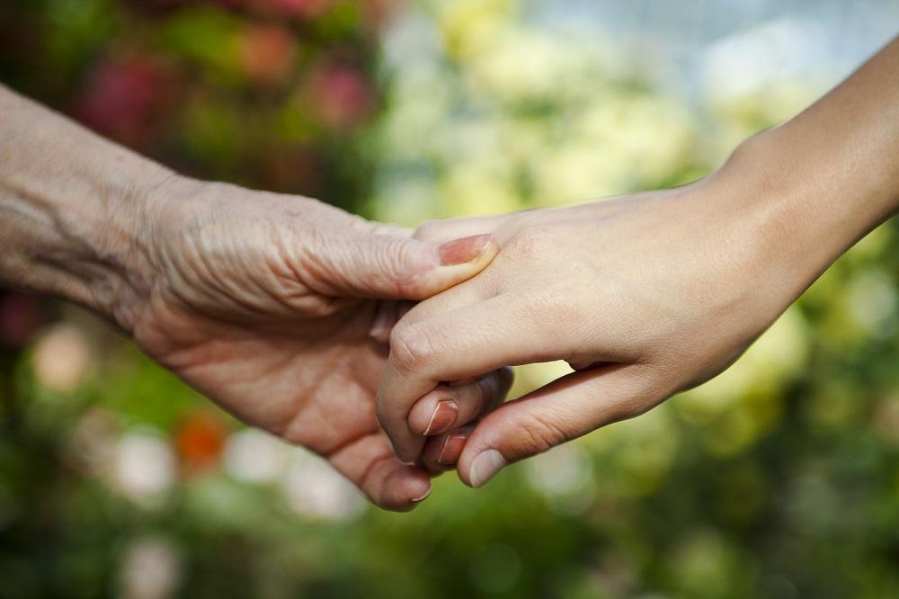 beneficiarios herencia sin testamento